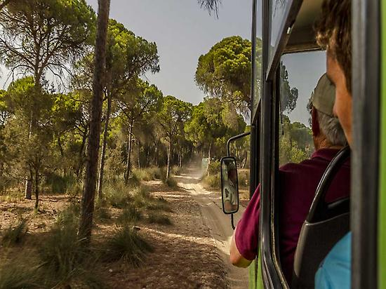 Excursión a Doñana(Shemsu.Hor- Flickr)