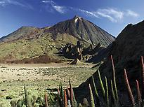Teide Tour and Cable Car Ride