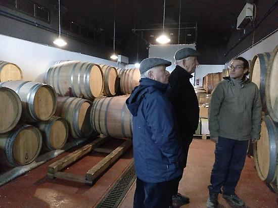 Visiting winerie in Madrid