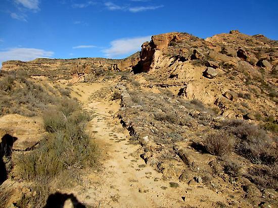 Geo-ruta the Piracés steppe