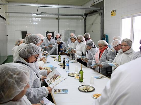 Visit cheese dairy and cheese tasting