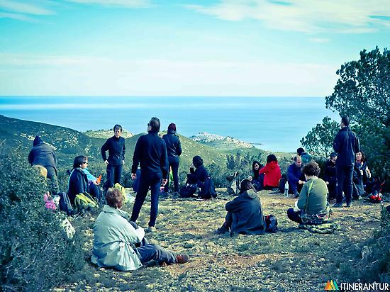 Landscape translators