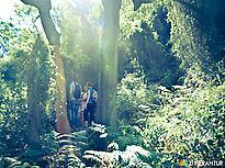 Sierra de espadán Natural Park.