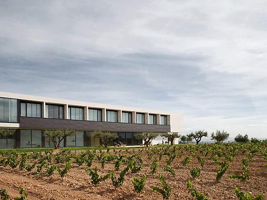 bâtiment et vignobles