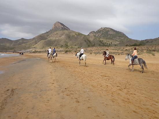 horse riding route on the beach