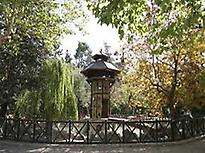 Modernist Garden Alcoi
