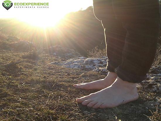 sunny barefoot
