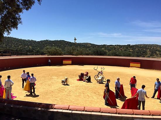 Learning to bullfight