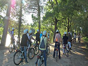 Tour in bicicletta e Caves Codorníu