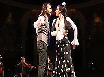Òpera y Flamenco, Historia d'un amour