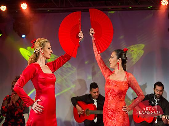 The Art of Flamenco at Las Arenas