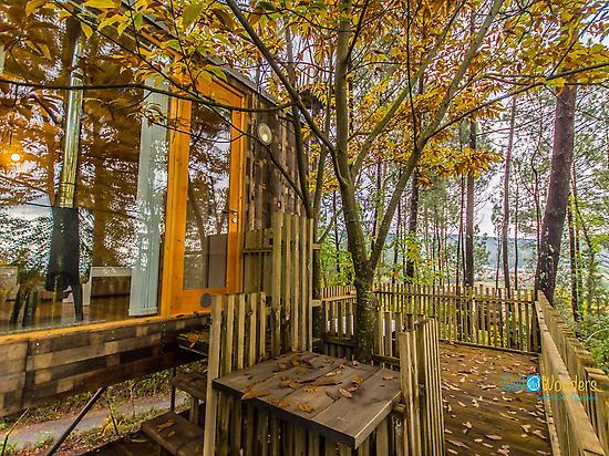 The area - Glamping Galicia