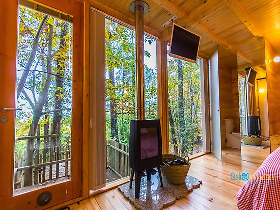 Inside the Glamping Cabin - Galicia