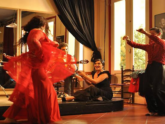 Private Flamenco Show
