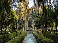 The Garden of Magellan and Elcano