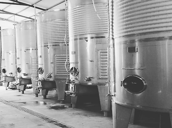 image of our winery
