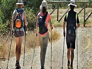 Vista Nordic Walking.