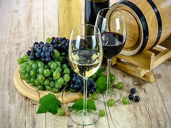 View of wine tasting.
