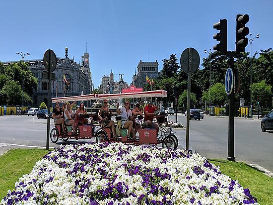 Diversión en Madrid con Beer bike