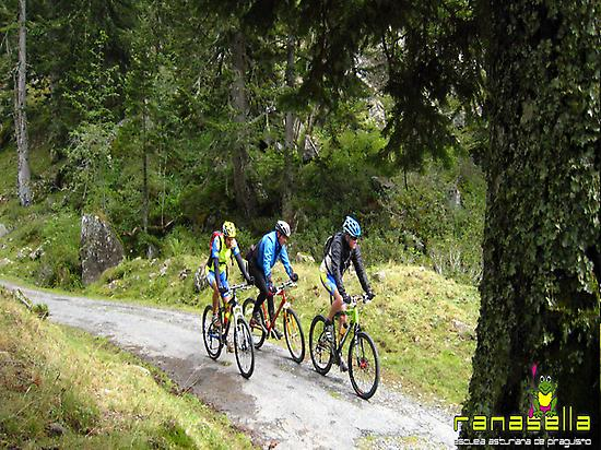 Mountain bike trails in Asturias