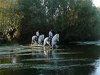 El río al atardecer