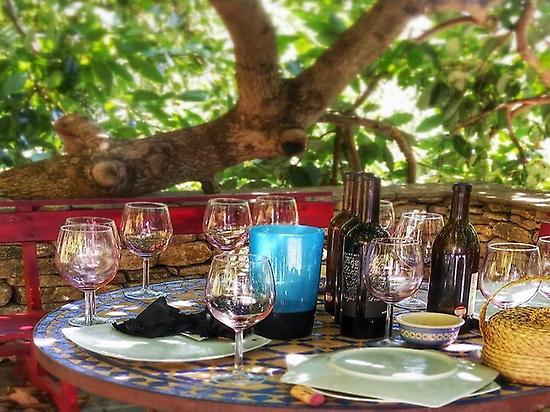 Lunch and wine tasting in Ronda