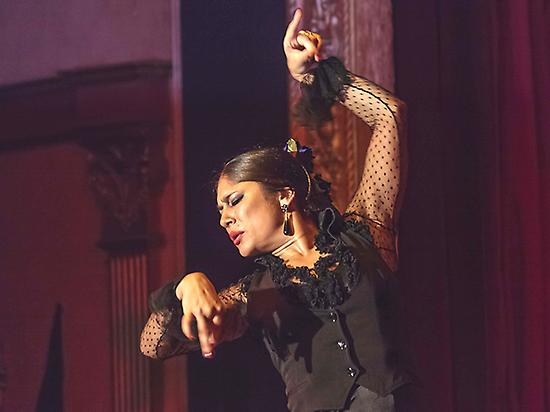 Cruise in Seville + Flamenco show