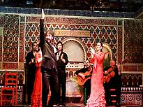 Flamenco Show With Cup in Madrid 0