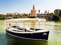 Cruise on the Guadalquivir River 0