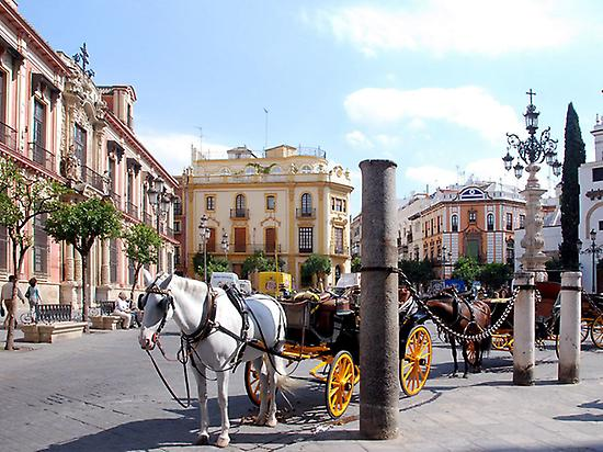 Enjoy a private tour of Seville