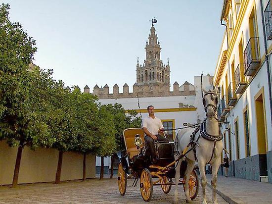 Horse riding in Seville