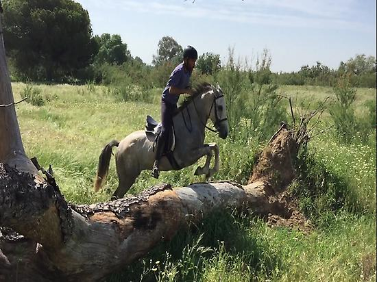 Horseback riding in El Rocio (Huelva)
