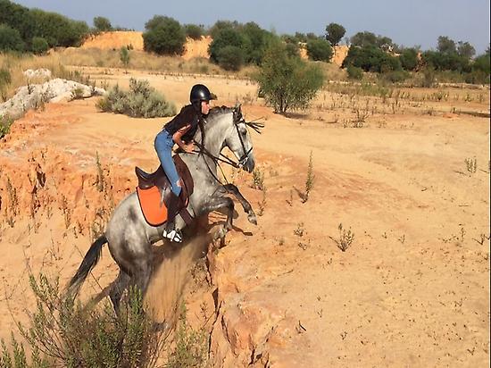 Horse adventures in Doñana (Andalusia)
