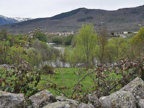 Gredos-Navatejares orilla del Río Tormes