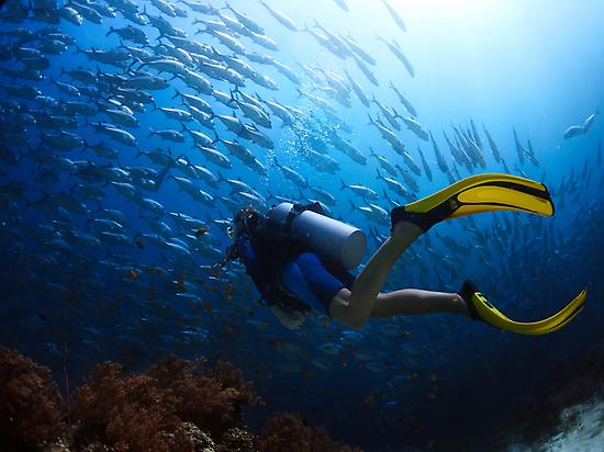 Discover Scuba Diving in Playa de Aro