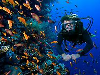 Scuba Diving Immersion in Girona