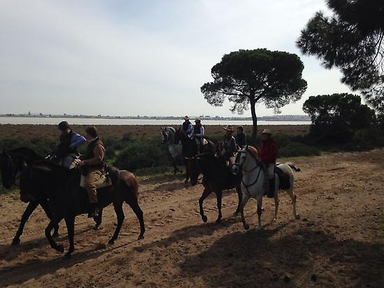 Private route to Horse by Doñana