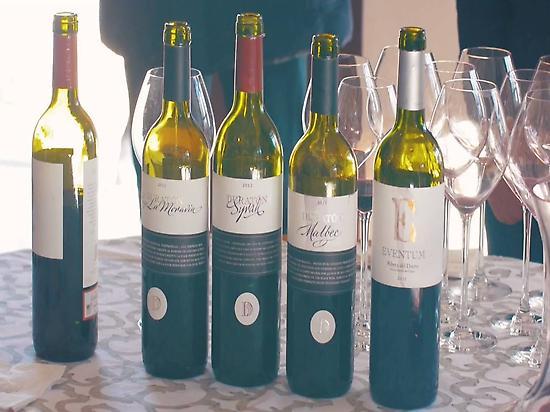 Pasión por el vino.