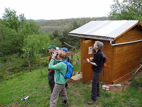 Birdwatching in the Izki forest