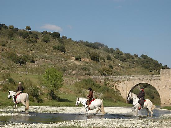 Crossing Almonte river