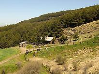 Suerte Fuente Alta