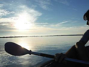 Kayaking in Isla Cristina marshlands