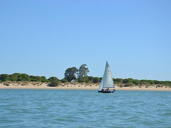 Sailing through Guadalquivir and Doñana