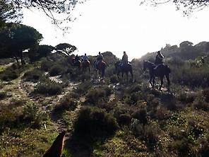 Horse ride in Doñana National Park