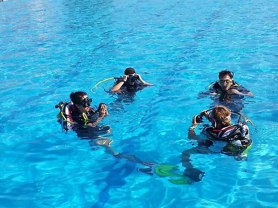 Ecocourse Open Water Diving SSI