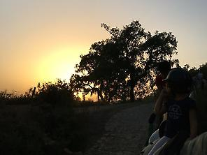 Horse ride routes in Sierra de Huelva