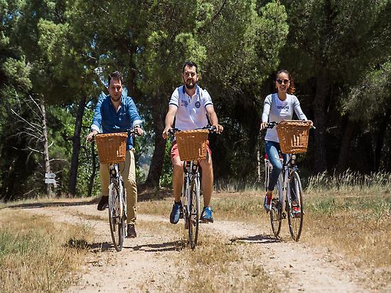 Bike routes.