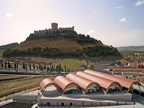 Castillo de Peñafiel y bodega Protos.