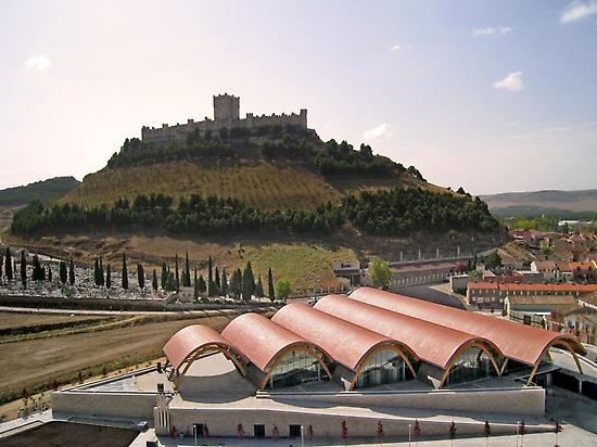 Castle of Peñafiel and Protos winery.