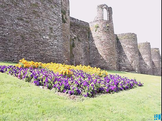 Image of the Roman Wall
